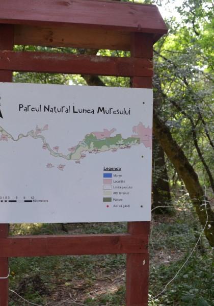 Parcul Natural Lunca Mureșului