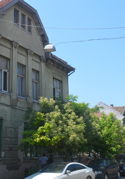 Palatul Oncu