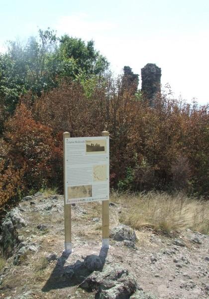 Cetatea Deznei