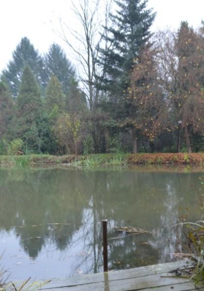 """Parcul Dendrologic """"Arboretum Silva"""""""